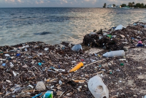 Single-use plastic waste
