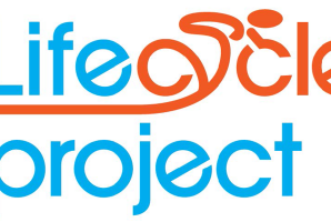 Lifecycle project